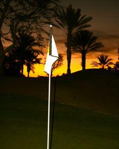 Dawn in the desert...