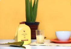 Forever Living is the world's largest grower, manufacturer and distributor of Aloe Vera. Discover Forever Living Products and learn more about becoming a forever business owner here. Aloe Vera Gel Forever, Forever Living Aloe Vera, Forever Aloe, Forever Living Products, Aloe Vera Juice Drink, Forever Living Business, Nutrition Drinks, Aloe Leaf, Balanced Diet