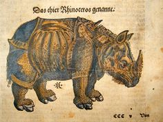 """Armored rhino, Sebastian Münster, Cosmographia, 1544. The book was very popular because of the woodcuts it contained, a bunch of fantastic creatures wearing Speedos. Here is another great image from that same book: """"the animal named rhinoceros"""", as the German caption states. The decorator emphasized the protective armour of the animal, turning the rhinoceros into a medieval knight. The owner of this copy had the woodcut coloured in, which makes the tank-like animal look like an assault…"""