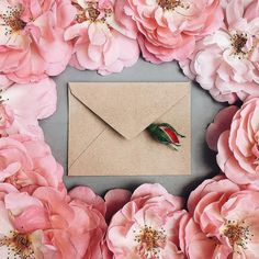 ✉️Give thanks in every circumstance, for this is God's will for you in Christ Thessalonians Love Flowers, Beautiful Flowers, Envelopes, Bloom And Wild, Nature Spirits, My Funny Valentine, Floral Letters, How To Preserve Flowers, Arte Floral