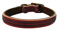 Weaver Leather 1 x 19 Outlaw Collar Medium Sunset ** Click on the image for additional details.Note:It is affiliate link to Amazon.