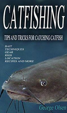 Catfishing: Tips and Tricks for Catching Catfish #coursefishingtips