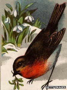 european robin and snowdrops...spring is near
