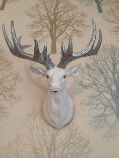 Stag Head 'Dasher', £45.00