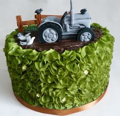 Massey Fergusson tractor cake.  I airbrushed the ruffles to make it appear like a hedge.