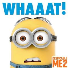 Lol I love minions Minions What, Cute Minions, Minions Despicable Me, Funny Minion, Minion Party, Minions Quotes, Space Crafts, Craft Space, Pierre Coffin