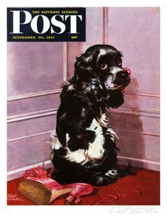 butch the cocker spaniel - Yahoo Canada Image Search Results
