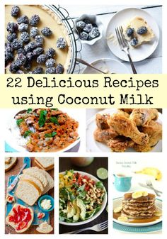 25 Recipes using Coconut Milk:  Add it to soups, smoothies and baked goods. It's also amazing as a marinade for chicken and shrimp. The following 22 recipes are just a few ways to enjoy coconut milk in your diet.