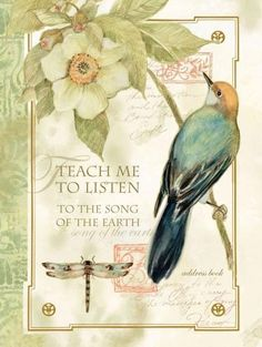 Teach Me to Listen to the Song of the Earth Address Book