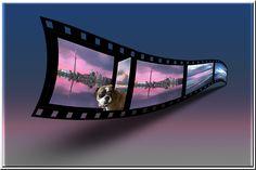 #LOVE My Facebook page: https://www.facebook.com/MrOgdenGeorge/  #GeorgeOgden #MyPhotography 3D Film Strip with a Dog