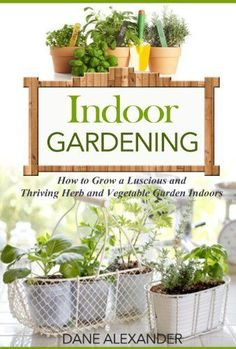 Indoor Gardening: How to Grow a Luscious and Thriving Herb and Vegetable Garden Indoors (Your Guide to Growing Fruits, Vegetables, and Other Plants Indoors) by Dane Alexander Indoor Vegetable Gardening, Hydroponic Gardening, Organic Gardening, Container Gardening, Herb Garden, Garden Plants, Indoor Plants, Growing Herbs Indoors, Herb Seeds