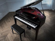 Yamaha Avantgrand N3. MSRP $20,000, Street $15,000. Acoustic grand keybed connected to a digital piano's guts with the oomph of some quality speakers. If I (re)learn how to play, this is on my wishlist.