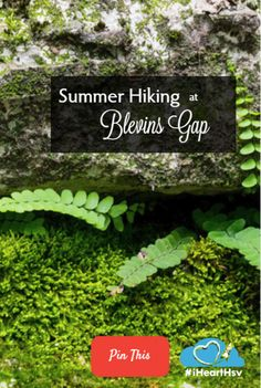 Over 10 miles of trails, just waiting to be explored at Huntsville's Blevins Gap Preserve.