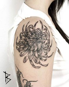 Engraving style chrysanthemum tattoo on the right shoulder. Tattoo Artist: Loïc LeBeuf