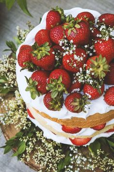 Find summer solstice party ideas including decor, recipes, and flowers on domino. The domino editors share beautiful, bohemian ideas for your summer solstice party. Brownie Desserts, Oreo Dessert, Mini Desserts, Cupcake Cakes, Cupcakes, Strawberry Cakes, Strawberry Shortcake, Summer Solstice, Let Them Eat Cake