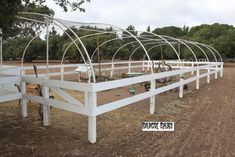 Duck hoop house with wood fencing around it