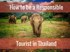 It's important to know how to be a responsible tourist in Thailand. Diana tells us how to dress and behave while traveling to this popular country.