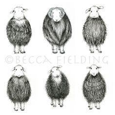 Herdwick pen drawings Abstract Animal Art, Sheep Drawing, Drawing Sketches, Pen Drawings, Drawing Ideas, Pen And Wash, Sheep Art, Doodle, Sgraffito