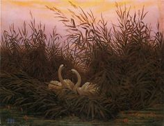 ~ Caspar David Friedrich - Swans among the reeds at the first Morgenro