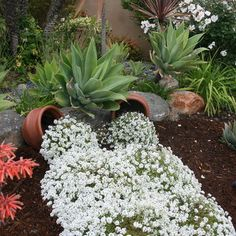 Spilled Flower Pot Ideas Pots Are A Whimsical And Humorous Trend In Garden Design This Is An Easy Concept To Use Any Backyard