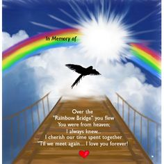 "A personalized bird memorial #RainbowBridge #MemorialPoem #PetLoss poem to honor a very special #BelovedBird who crossed over the ""Rainbow Bridge."""