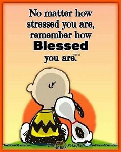 Charlie Brown Quotes, Charlie Brown And Snoopy, Peanuts Quotes, Snoopy Quotes, Snoopy Love, Snoopy And Woodstock, Inspiring Quotes About Life, Inspirational Quotes, Motivational