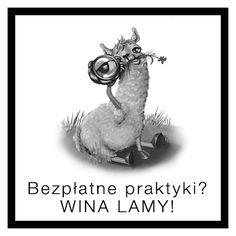 Głośno się zrobiło w mediach po umieszczeniu na Facebooku ogłoszenia o bezpłatnych praktykach przez agencję Social Lama z Warszawy. Oliwy do ognia dolewa sama agencja, pokazując tym samym swoją indolencję w komunikacji przez social media.