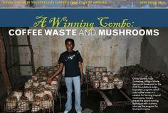 PAEPARD: Mushroom production using coffee waste