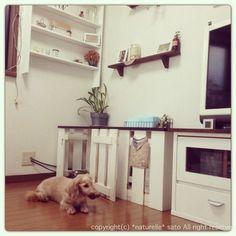 【ペットと暮らす】ケージのDIY術やトイレの隠し方実例