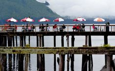 """Icy Strait Point, Alaska. Loved this place; and so much to do! Zip line, whale watching cruise, forest tram, """"city"""" tour, museum, art gallery."""