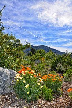 Los Rios Trail in Oak Glen California