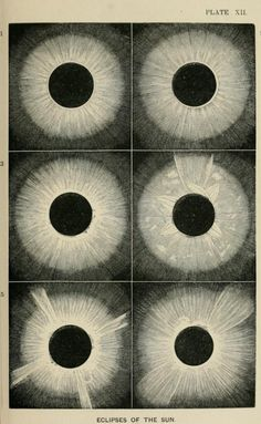 Plate XII. Eclipses of the Sun. The heavens; an illustrated handbook of popular astronomy. 1867.
