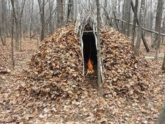 "Are You Prepared to Survive in the Wilderness Alone? ""Natural Shelter, Blend In"" 