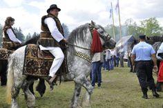 Şi la ediţia de anul acesta a Horei Bucovinei, participanţii au putut să viziteze stânele tradiţionale venite din mai multe localităţi ale judeţului, Frasin, Stulpicani, Vama, Fundu Moldovei sau din zona Humor, şi să guste din balmoşul, brânza şi caşul preparate de ciobani, dar şi din mieii şi porcii preparaţi la proţap.