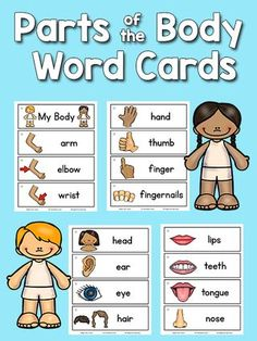 Body Parts Picture-Word Cards