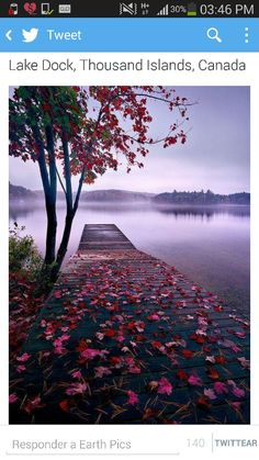 Lake Dock, Thousand Islands, Canadá.