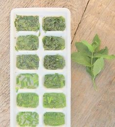 When your garden is bursting full of aromatic herbs, it's time for a harvest. You will surely have far more than you can use fresh. And there are many more ways to preserve herbs than what is displayed on your spice rack. Herb Guide, Aquaponics Greenhouse, Aquaponics Diy, Aromatic Herbs, Herbs Indoors, Frozen Meals, Preserve Herbs, Growing Herbs, Fruit And Veg