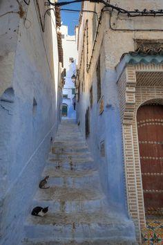 https://flic.kr/p/puoRHz | Chefchauen, Chauen, Marruecos
