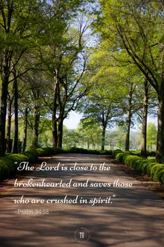 Did you know that God draws close to the brokenhearted? He knows your pain and desires to bring you peace. Will you call upon Him and accept that He desires to heal your crushed spirit? Find more encouraging Bible verses! Scripture Images, Bible Verses Quotes, Happy Scripture, Prayer Quotes, Encouraging Bible Verses, Biblical Quotes, Encouragement Scripture, Bible Text, Bible Words