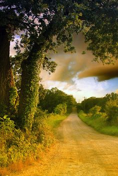 texas hill country road..