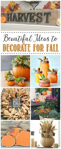 Beautiful fall proje