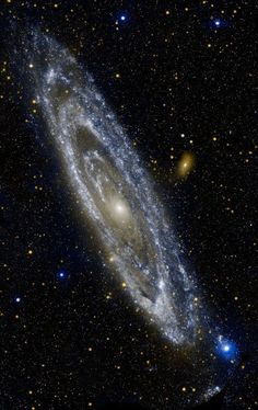 The Andromeda galaxy, also known as is only million light years away. It covers about light years, so to produce this gorgeous photograph in ultraviolet light from the telescope satellite Galaxy Evolution Explorer (GALEX) have been required. Cosmos, Space Planets, Space And Astronomy, Telescope Pictures, Digital Foto, Space Photography, Astronomy Photography, Space Images, Space Photos