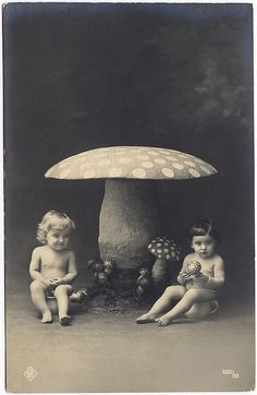 ~ 1917 ~ don't get out the album where its got us naked as babies on chamber pots under giant mushrooms
