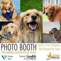 Save the date and get ready to load up the car and your Goldens for an action-packed day at the majestic Viamede Resort ~ nature's paradise in the Kawarthas. Rainbow Bridge, Golden Dog, Volunteers, Four Legged, Shutter, Rescue Dogs, Photo Booth, Fundraising, Life Is Good