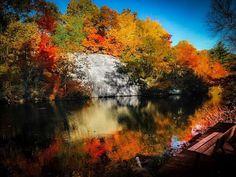 Thayer's Pond, Wilton CT