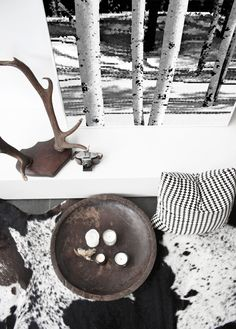 1000 Images About Cowhide Rugs In Rooms On Pinterest