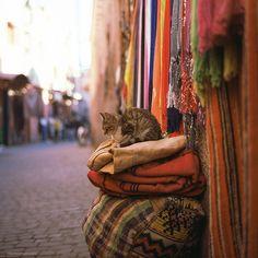 Colors. | Marrakhesh