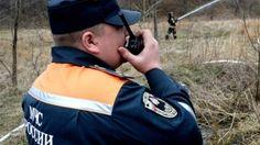 Спасатели обезвредили осиное гнездо на территории детского сада https://rusevik.ru/news/355578