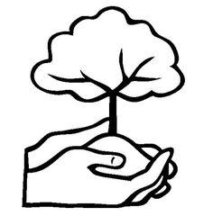 55 En Iyi Orman Haftasi Goruntusu 2020 Ormanlar Faaliyetler Ve