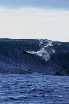 ...surf Mavericks